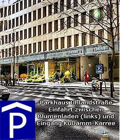 image_parken2020 gabriele hoffmann wahrsagerin anmeldung